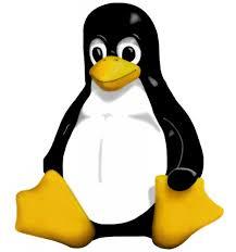 Empresas estão aflitas por talentos em Linux, diz relatório